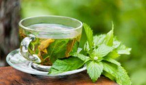 الشاي -الأخضر- لعلاج -حب -الشباب