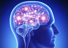 5- فيتامينات -لتقوية -الذاكرة